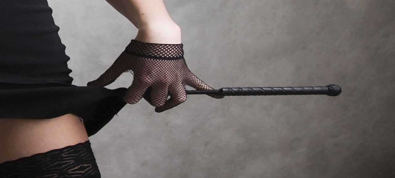 BDSM riding crop